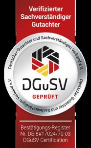 Siegel_DGuSV